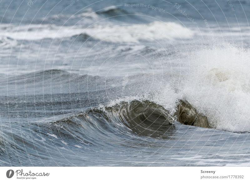 Wellengang #1 Natur Ferien & Urlaub & Reisen Pflanze Sommer Wasser Landschaft Ferne Strand Küste Tourismus Wellen Ausflug Kraft Insel nass Abenteuer