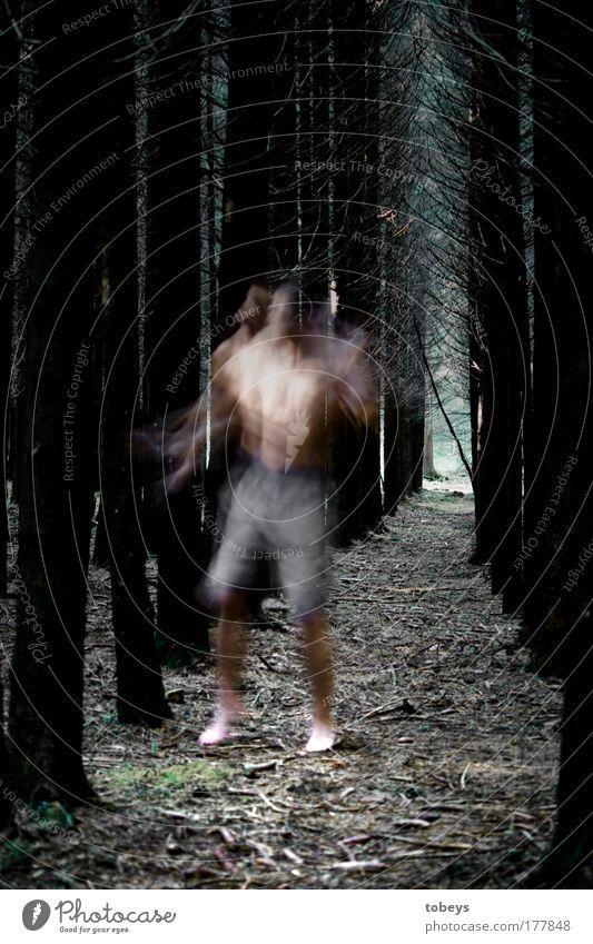 perplex Mensch Natur Jugendliche Baum Einsamkeit Wald Umwelt dunkel kalt Junger Mann Gefühle Bewegung träumen Stimmung Angst gefährlich