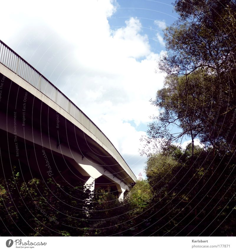 stadtaffe. Himmel Natur Baum Ferien & Urlaub & Reisen Sommer Wolken Wald dunkel kalt Landschaft Park Verkehr Brücke Sträucher Güterverkehr & Logistik Autobahn