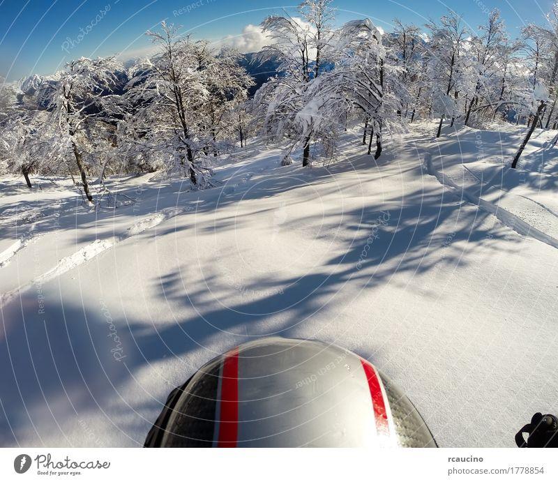 Skifahren im Neuschnee. POV mit Action-Cam auf dem Helm. Freude schön Freiheit Winter Schnee Berge u. Gebirge Sport Mensch Mann Erwachsene Natur Landschaft Wald