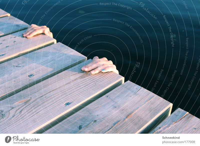 Na wo ist Sie denn? Mensch Natur Jugendliche blau Wasser Hand Sommer Freude ruhig Umwelt Holz Küste See Schwimmen & Baden Freizeit & Hobby nass