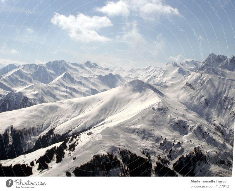 Schnee - fast unberührt Himmel blau weiß Sonne Winter schwarz Freiheit Berge u. Gebirge hell hoch Alpen Unendlichkeit Luftaufnahme Begeisterung