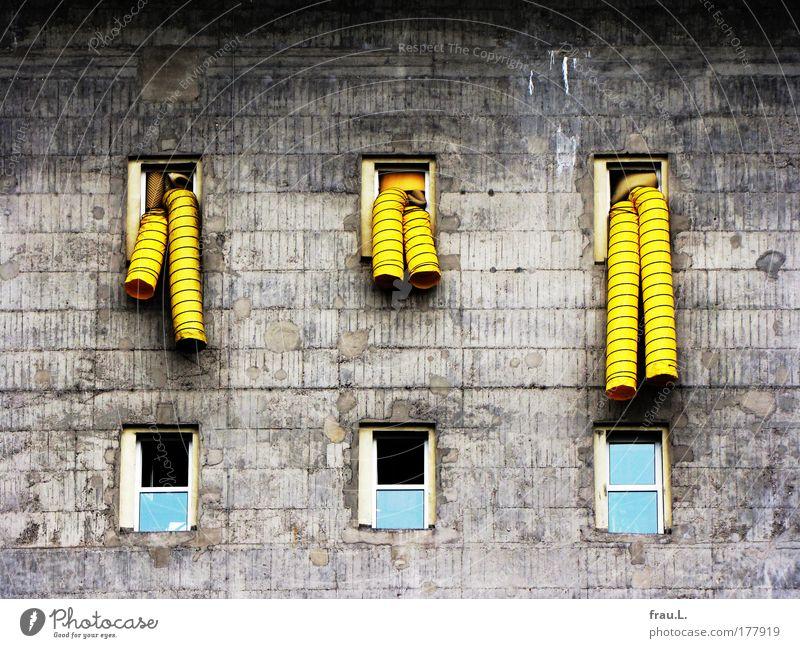 Mr. Tuttle!!!!! alt Haus gelb dunkel Fenster Wand Architektur grau Gebäude Mauer Fassade Beton Wandel & Veränderung Macht Bauwerk Kunststoff