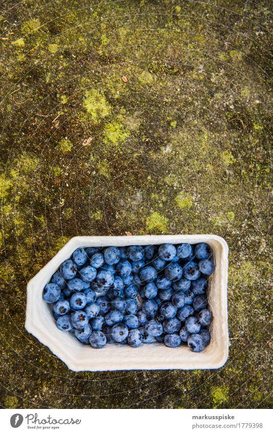 frische bio blaubeeren ernte Lebensmittel Frucht Blaubeeren Sammlung Ernte selbstverpflegung urban gardening Ernährung Essen Lifestyle Gesunde Ernährung Haus
