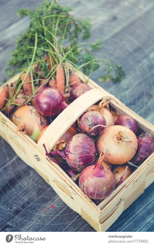 frische bio ernte urban gardening Lebensmittel Gemüse Kräuter & Gewürze Zwiebel Möhre Korb Ernte Erntedankfest selbstverpflegung anbauen Ernährung Essen