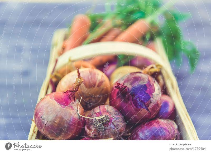 urban gardening gemüse ernte Natur Gesunde Ernährung Freude Umwelt Leben Lifestyle Gesundheit Garten Lebensmittel Arbeit & Erwerbstätigkeit Freizeit & Hobby