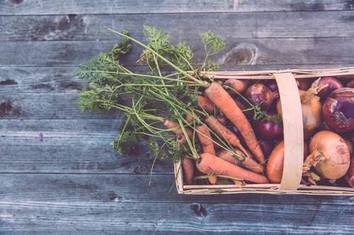 frische bio ernte urban gardening Lebensmittel Gemüse Salat Salatbeilage Möhre Korb Zwiebel selbstversorgung selbstversorger Ernährung Mittagessen Picknick