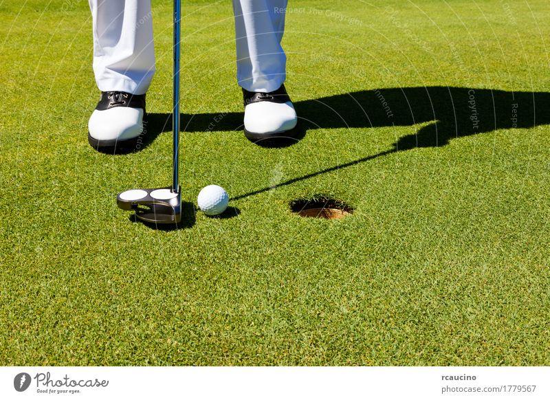 Golf: Golfspieler auf dem Putting Green, bereitet sich vor zu setzen Freude Erholung Spielen Sommer Sport Golfplatz Mann Erwachsene Fuß Hose Schuhe stehen grün