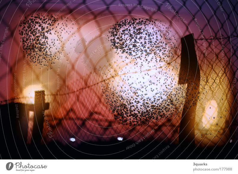 maschendraht Farbfoto Außenaufnahme Experiment Menschenleer Abend Lichterscheinung Sonnenaufgang Sonnenuntergang Gegenlicht Kunst Kunstwerk Umwelt Feuer