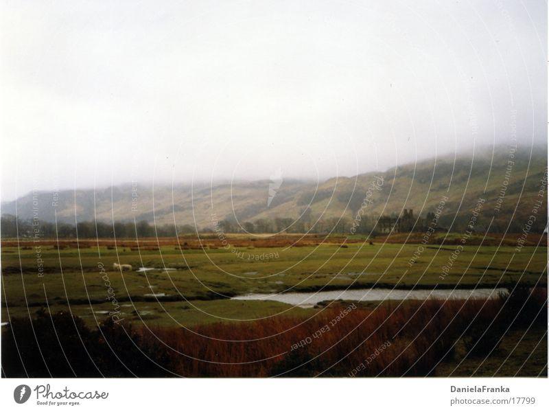 Highlands Natur Wasser grün Wiese Nebel Hügel England Schottland Highlands