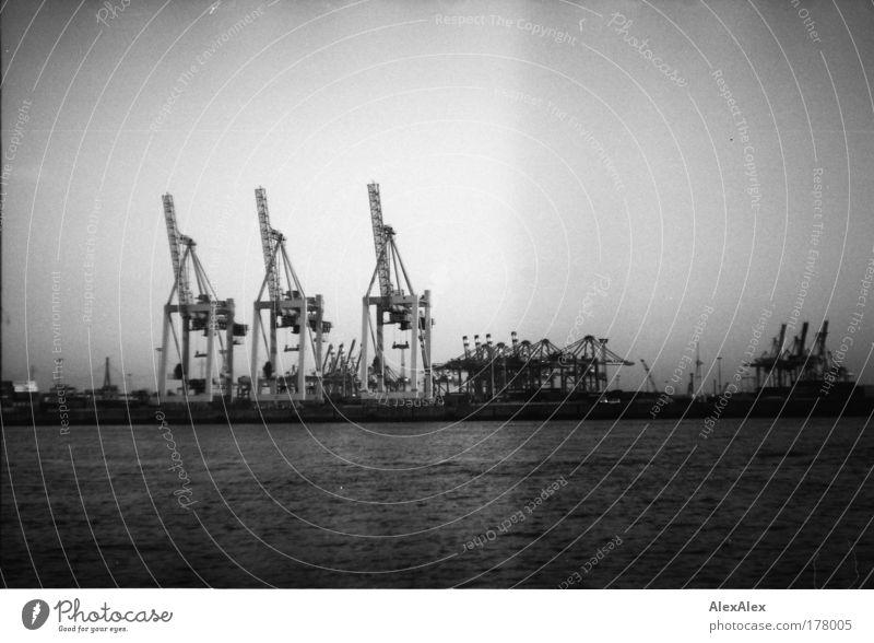 die drei musketiere Handel Güterverkehr & Logistik Containerterminal Containerbrücke Kran Wasser Sommer Flussufer Elbe Hamburg Hafen Hafenstadt Industrieanlage