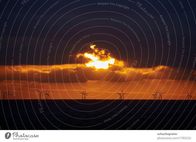 Sonnenuntergang über Offshore-Windpark Himmel Natur Wasser Meer Wolken Umwelt Energiewirtschaft Insel Romantik Urelemente Windkraftanlage Nordsee nachhaltig
