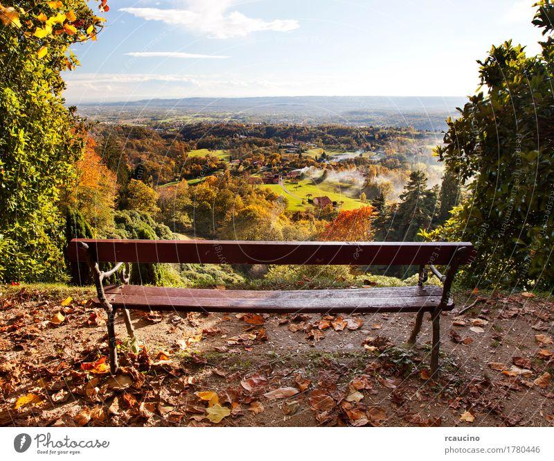 Bench in einem Park mit Blick auf die Landschaft in der Herbstsaison Natur Pflanze Sommer grün Baum Wald gelb Bank horizontal Wildnis