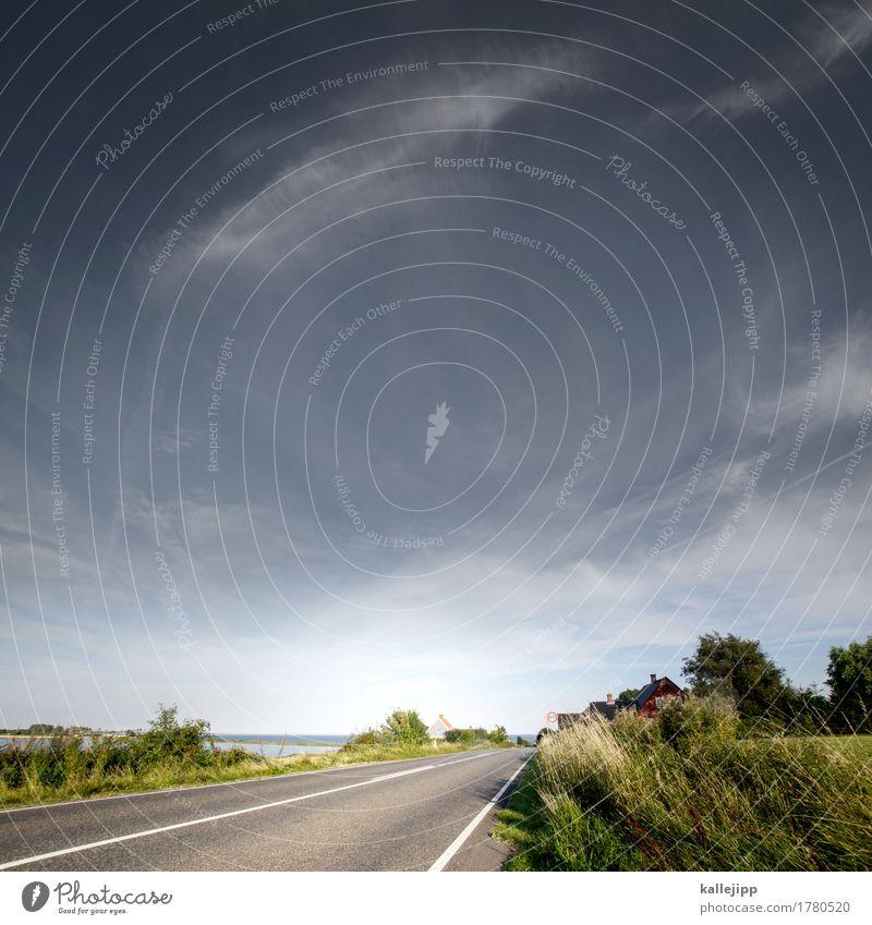 rata-rata-radatadada ... Umwelt Natur Landschaft Pflanze Tier Himmel Wolkenloser Himmel Baum Wiese Feld Küste Bucht Ostsee Meer Verkehr Verkehrswege