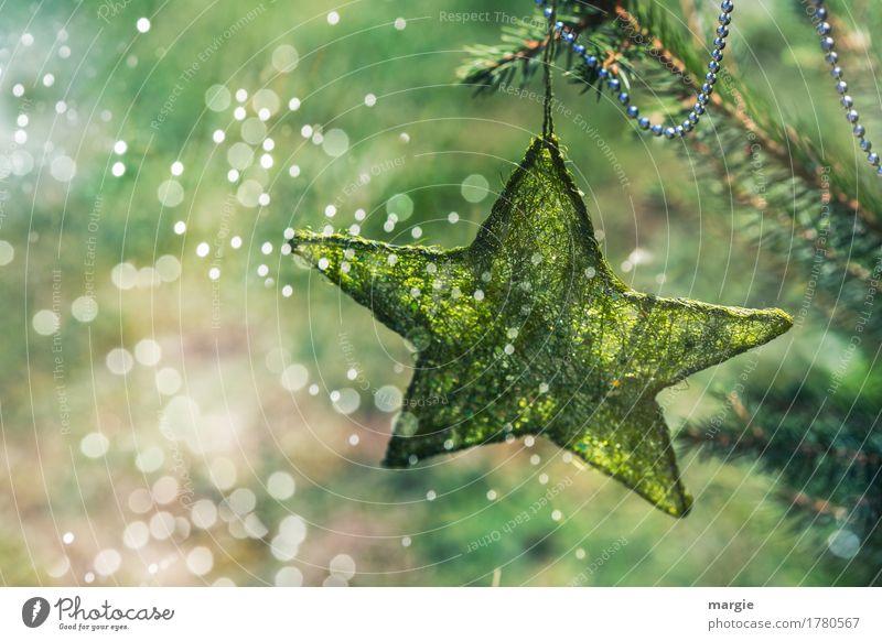 Sternschnuppen: grüner Stern mit Kette am Weihnachtsbaum umgeben von vielen Lichtern Feste & Feiern Weihnachten & Advent Silvester u. Neujahr Baum Grünpflanze