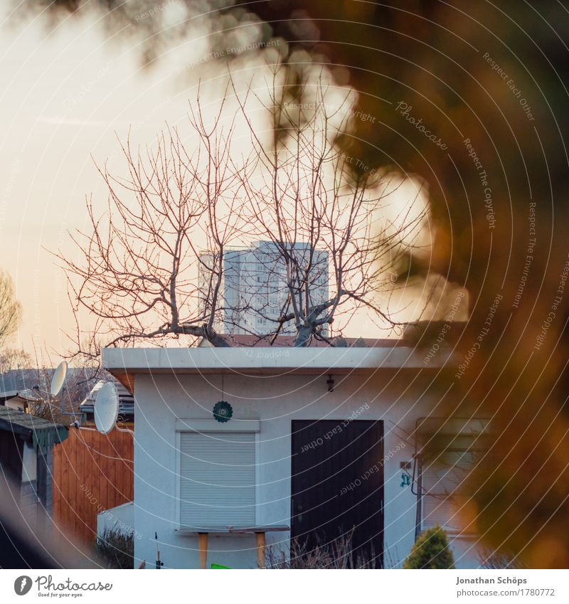 Kleingärten IV Haus ruhig Winter Umwelt Herbst Garten Häusliches Leben Zufriedenheit Tür Hochhaus Idylle Hütte Schrebergarten Heimat kahl geduldig