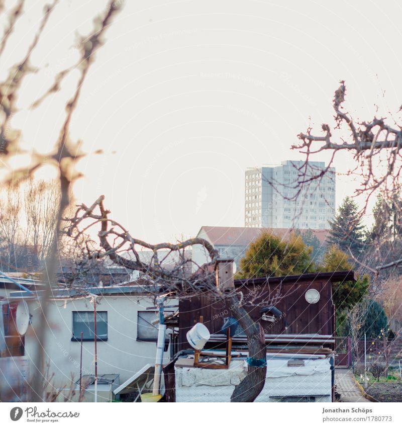 Kleingärten III Haus ruhig Winter Umwelt Herbst Garten Häusliches Leben Zufriedenheit Hochhaus Idylle Hütte Schrebergarten Heimat kahl geduldig Block