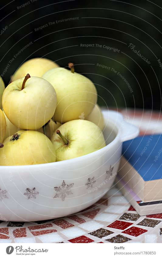 Pause im Garten Gesunde Ernährung Erholung ruhig natürlich Lifestyle Gesundheit Lebensmittel Frucht Freizeit & Hobby Zufriedenheit Idylle Buch lesen