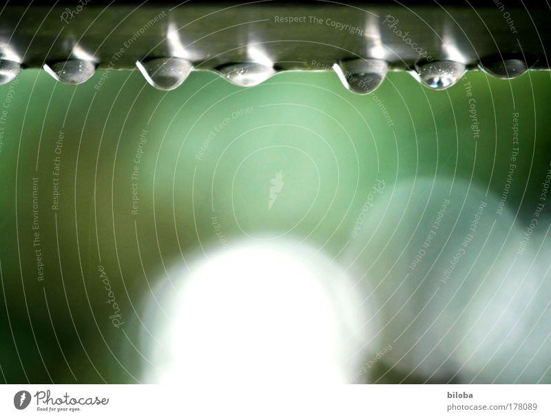 Nachem Räge schynt d'Sunne Wasser schön weiß grün Sommer Gefühle grau Traurigkeit Regen Stimmung warten Wetter Umwelt Wassertropfen Trauer Tropfen
