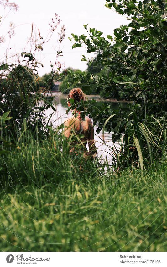 Spanner Frau Mensch Natur Jugendliche Wasser schön grün Pflanze Sommer ruhig Blatt Einsamkeit feminin Gras See