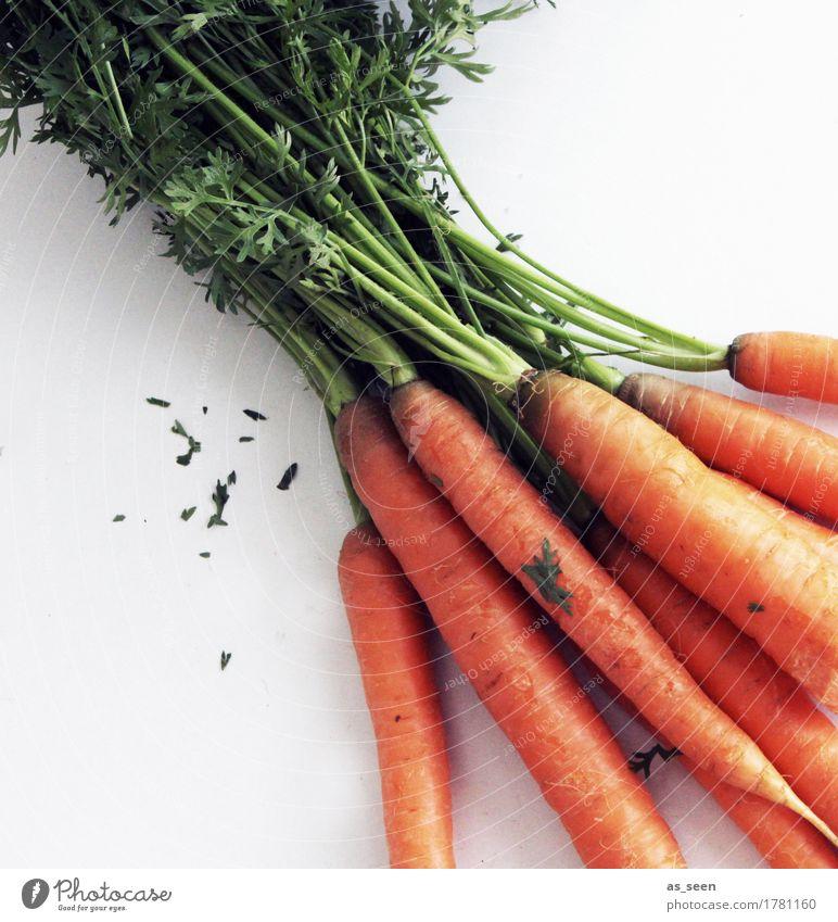 Frische Möhren Natur Pflanze grün Umwelt Essen Leben Lifestyle Gesundheit Garten Lebensmittel orange Feld Ernährung frisch genießen Küche