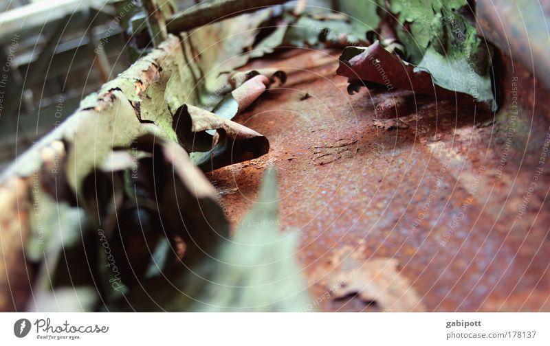 wer rastet der rostet alt grün rot Traurigkeit Metall braun kaputt Wandel & Veränderung Vergänglichkeit Fabrik Stahl Vergangenheit Rost Verfall Ruine Tradition