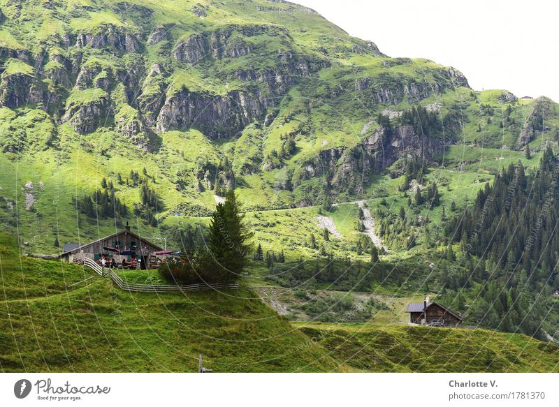 Jausenstation Natur grün Baum Landschaft Erholung Ferne Berge u. Gebirge Wege & Pfade Gras Tourismus frisch wandern Ausflug Europa Pause Gastronomie