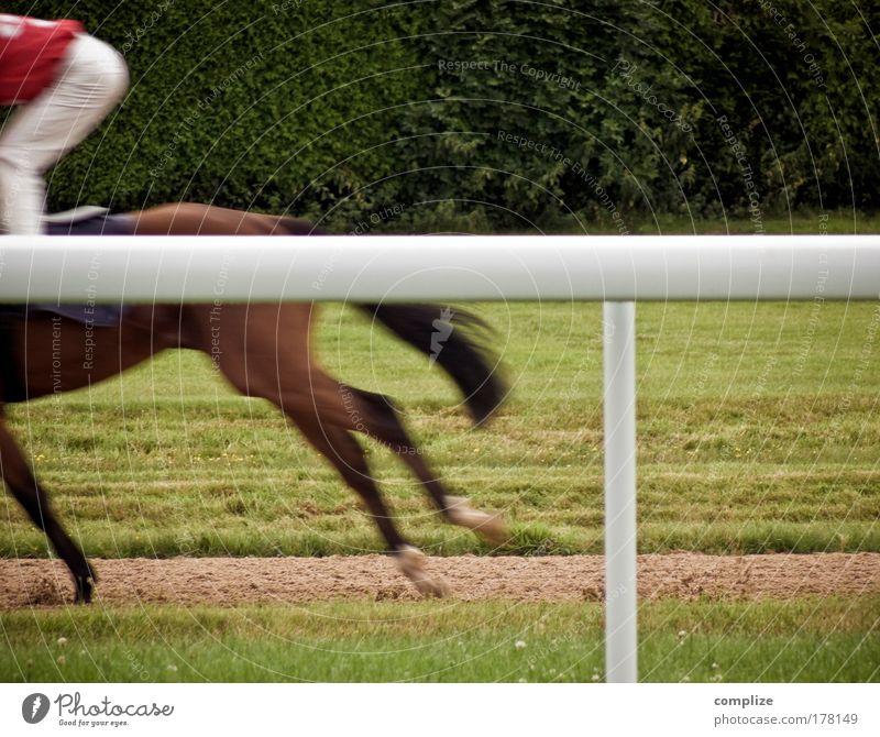 Western von gestern Mensch Mann Freude Erwachsene Sport Glück rennen Erfolg 18-30 Jahre Zeichen Rennbahn Freizeit & Hobby Pokal Sportler Optimismus
