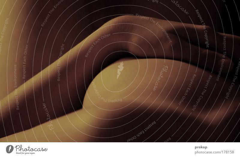 Honig. Liegend. Frau Mensch Hand Jugendliche Erotik feminin Haut Erwachsene Arme Akt weich liegen Brust zart sanft fein