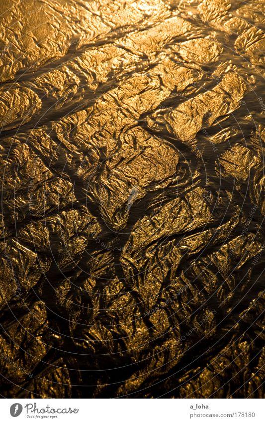 crossing the lines Wellen Sand Wasser Küste Strand Meer Menschenleer Linie Streifen glänzend leuchten nass schön gold Bewegung bizarr chaotisch einzigartig