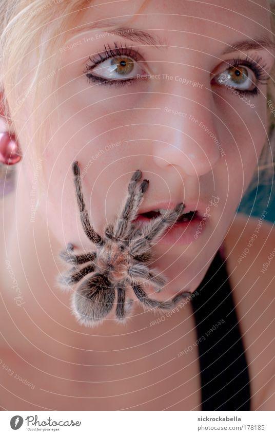 arachnophobia Frau Mensch Jugendliche Tier feminin Freundschaft Angst Erwachsene Porträt gruselig Blick nach oben Wildtier Spinne Raubspinne Junge Frau Tierliebe