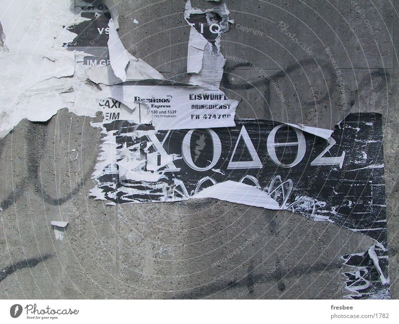 eiswürfel Wand Dinge Wildtier Dynamik Typographie Plakat Fetzen
