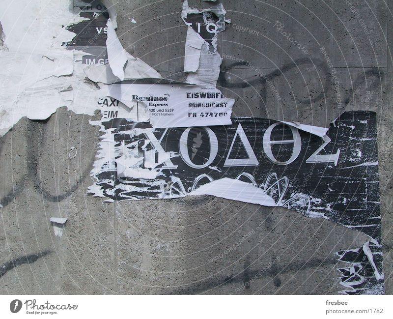 eiswürfel Wand Plakat Fetzen Typographie Dinge Wildtier Dynamik