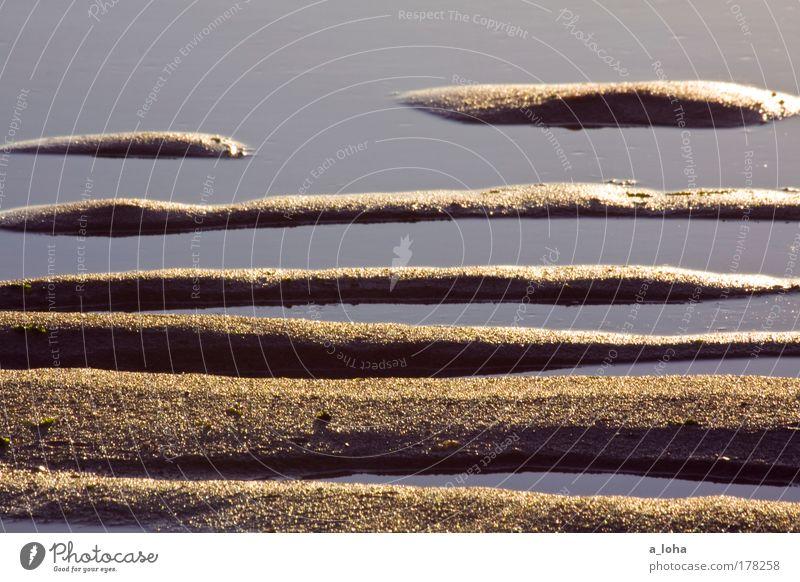 geordnetes chaos Natur Wasser Meer Strand Farbe ruhig Landschaft kalt Sand Linie braun glänzend nass Insel Streifen Gezeiten