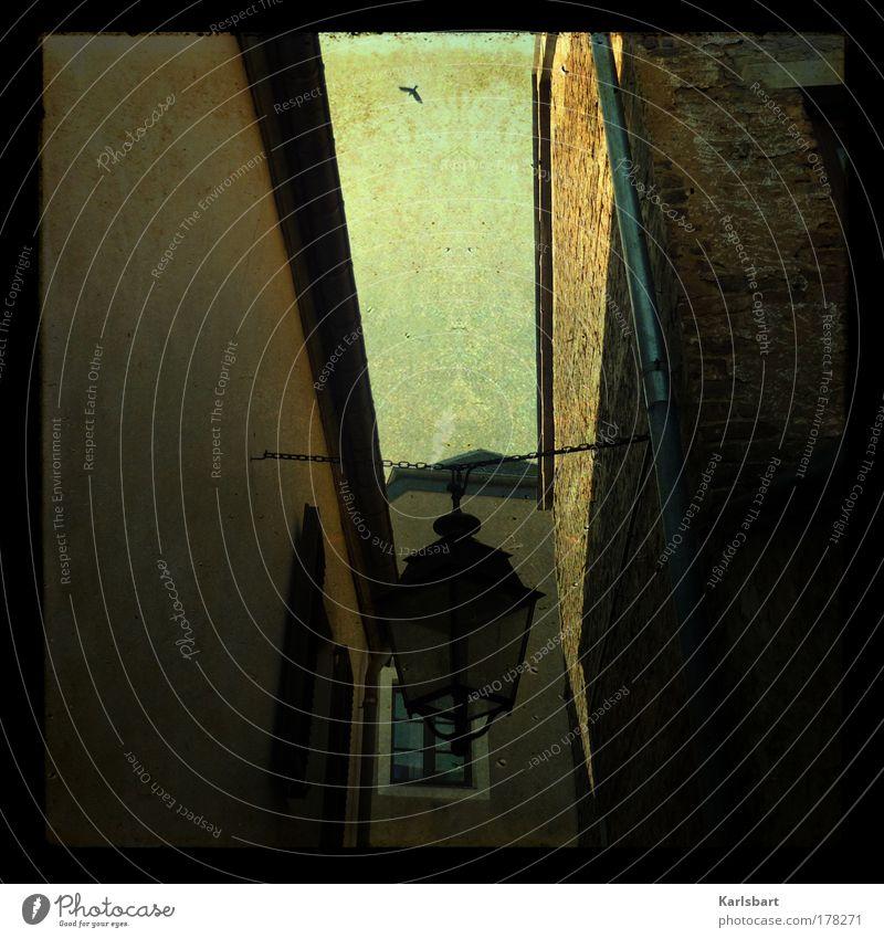 unter geiern. Himmel Stadt Haus Einsamkeit Straße Lampe Wand Mauer Wege & Pfade Gebäude Vogel Architektur Design fliegen Tourismus Kultur