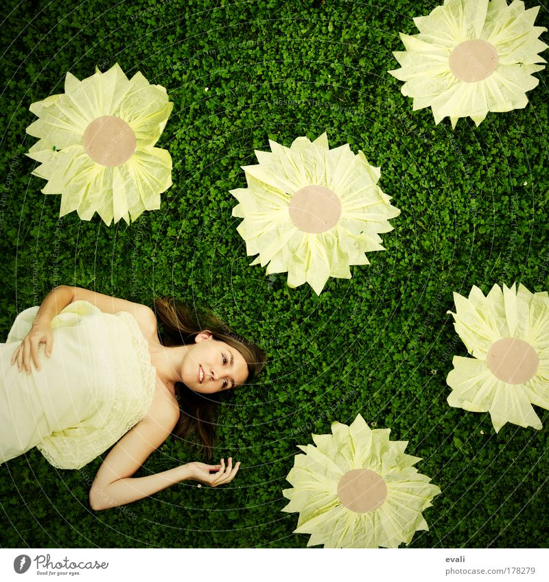 Happy sunflower party Frau Mensch Hand Jugendliche Blume grün Sommer Gesicht gelb Wiese Freude feminin Blüte Gras Frühling Garten