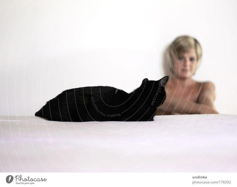 Schwarze Katze von links Mensch Jugendliche Tier ruhig Erwachsene Gesicht feminin träumen Stimmung Junge Frau blond sitzen 18-30 Jahre ästhetisch Kommunizieren