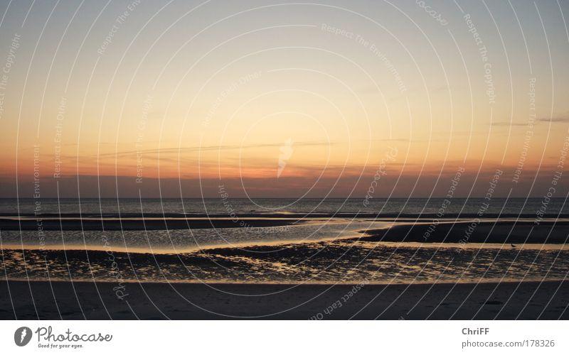 Kühl war's... Ferien & Urlaub & Reisen Strand Meer Insel Wellen Natur Wasser Himmel Schönes Wetter Nordsee Amrum Unendlichkeit Macht Fernweh Gewalt Einsamkeit