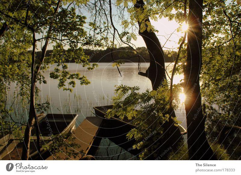 The Absolute Calmness Farbfoto Außenaufnahme Menschenleer Textfreiraum Mitte Abend Dämmerung Licht Schatten Reflexion & Spiegelung Sonnenlicht Sonnenstrahlen