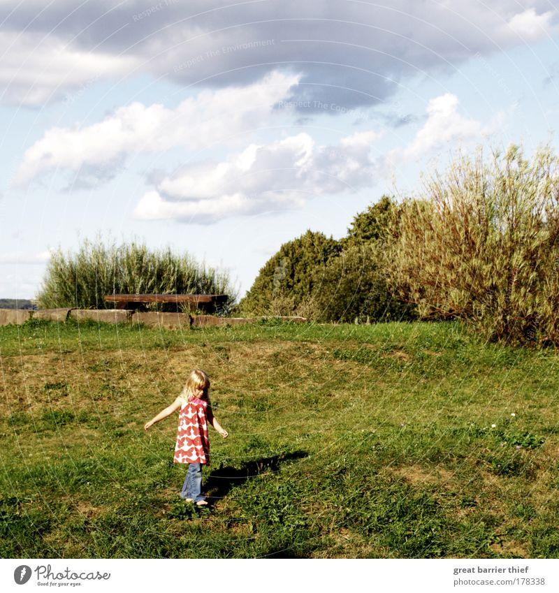 kleine entdeckerin Mensch Kind Natur grün Ferien & Urlaub & Reisen Mädchen Sommer Ferne Erholung Landschaft Gras Kindheit Zufriedenheit blond gehen natürlich
