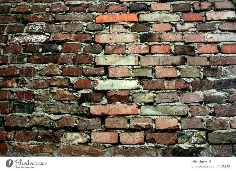 Another Pic From The Wall alt weiß grün rot Haus schwarz Wand grau Stein Mauer Gebäude braun dreckig Hintergrundbild Fassade bedrohlich