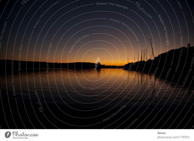 Sunrise Sailing Natur Wasser Himmel blau Pflanze Sommer Ferien & Urlaub & Reisen gelb Glück träumen See Landschaft Küste groß Horizont ästhetisch