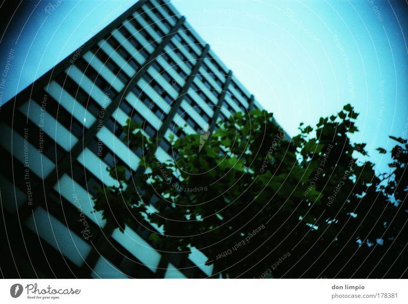 hochhaus Baum blau Sommer Haus Gebäude Wohnung Horizont Häusliches Leben Bauwerk Cross Processing Wolkenloser Himmel