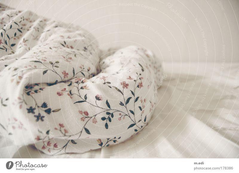 Bettgeschichte Lifestyle ästhetisch Bett Dekoration & Verzierung Innenarchitektur Stoff Bettwäsche