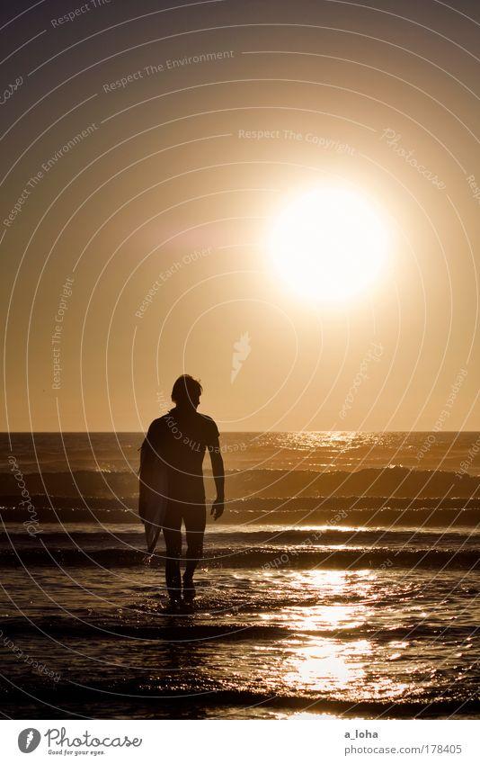 My Boy I Mensch Jugendliche Wasser schön Strand Meer Sport Bewegung Erwachsene Wellen Zufriedenheit glänzend maskulin dünn sportlich Surfen