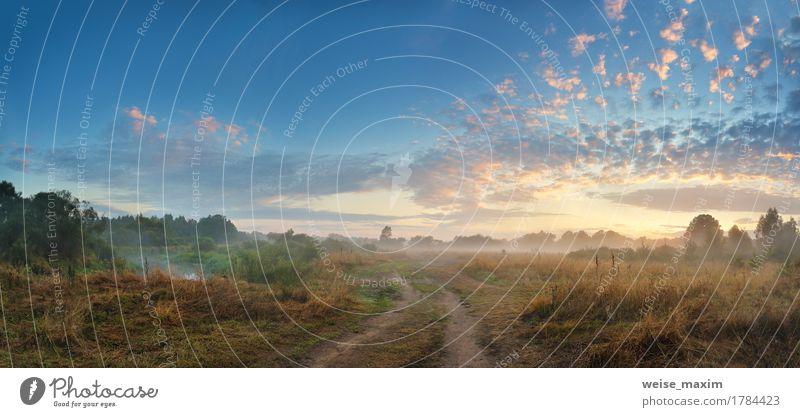Nebeliger Fluss am Herbstmorgen Ferien & Urlaub & Reisen Sommer Strand Tapete Natur Landschaft Himmel Wolken Sonnenaufgang Sonnenuntergang Schönes Wetter Baum