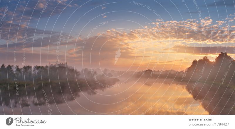 Himmel Natur Ferien & Urlaub & Reisen Sommer grün weiß Baum Landschaft Wolken Strand Wald Herbst Gras Sport See Nebel