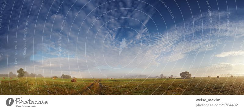 Nebelige Wiese am Herbstmorgen Himmel Natur Ferien & Urlaub & Reisen Sommer grün weiß Baum Landschaft Wolken Wege & Pfade Gras frisch Sträucher