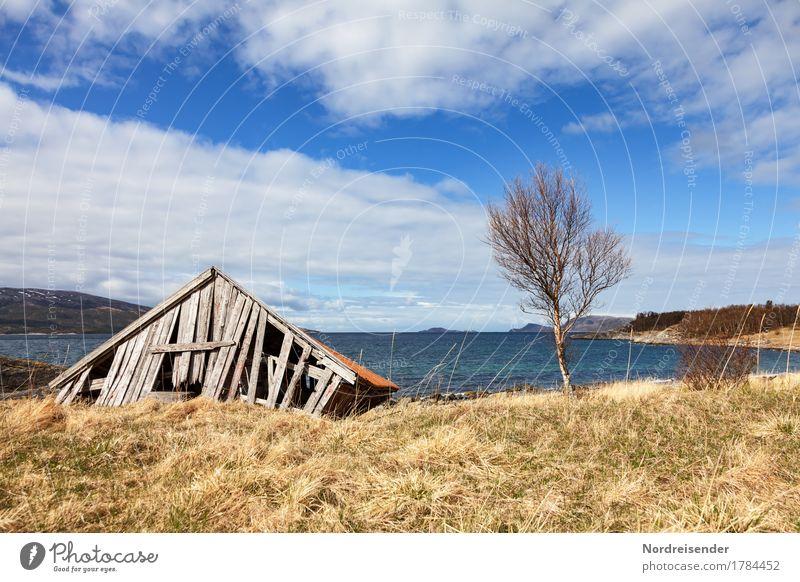 Ausfallerscheinungen Himmel alt Wasser Baum Meer Einsamkeit Wolken ruhig Senior Wiese Gras Küste Gebäude Stimmung Luft Schönes Wetter