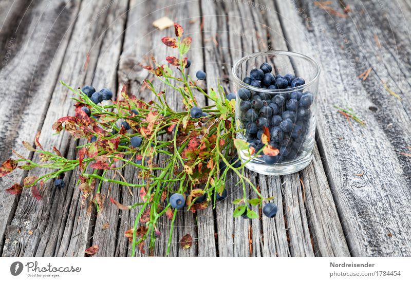 Blaubeeren Natur Sommer Wald Herbst natürlich Holz Lebensmittel Frucht Freizeit & Hobby Ernährung frisch Ausflug Glas genießen Freundlichkeit Bioprodukte